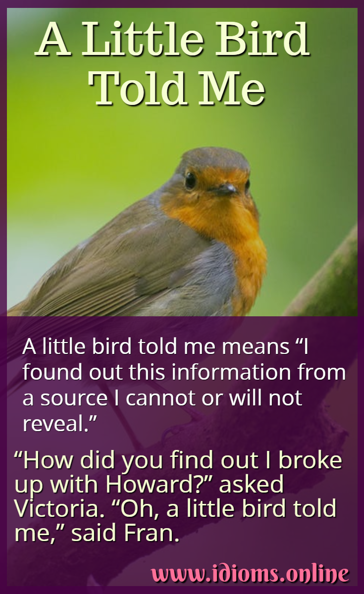 A little bird told me idiom meaning