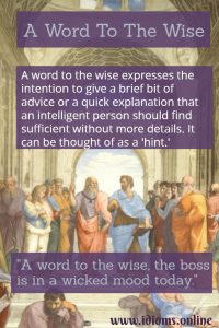 a word to the wise idiom meaning