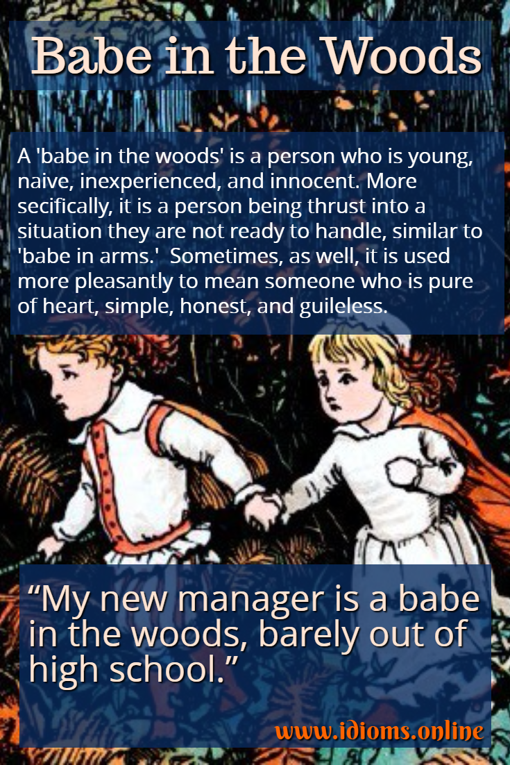 Babe in the woods idiom meaning