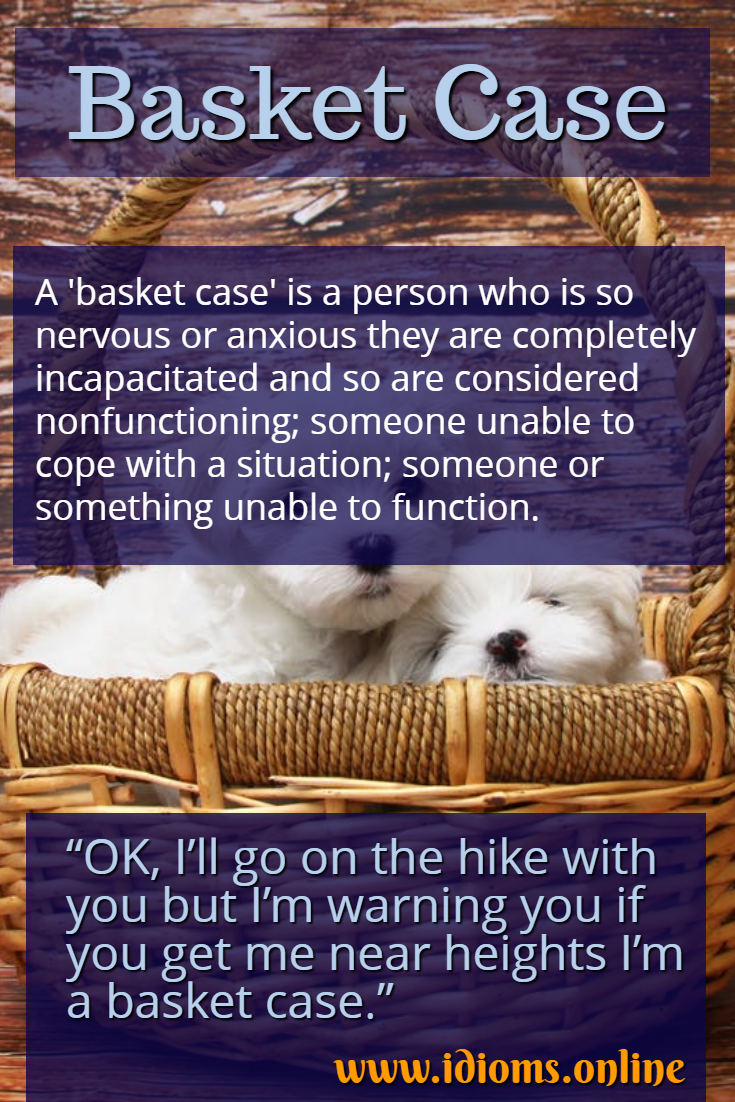 Basket case idiom meaning