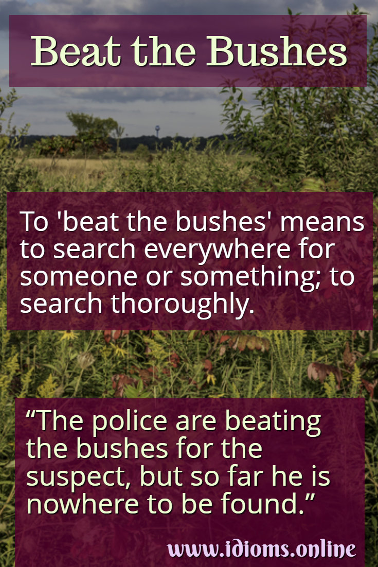 Beat the bushes idiom meaning