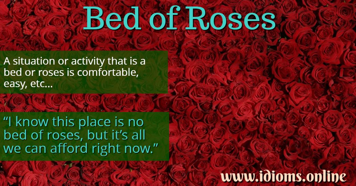 Bed Of Roses Idioms Online