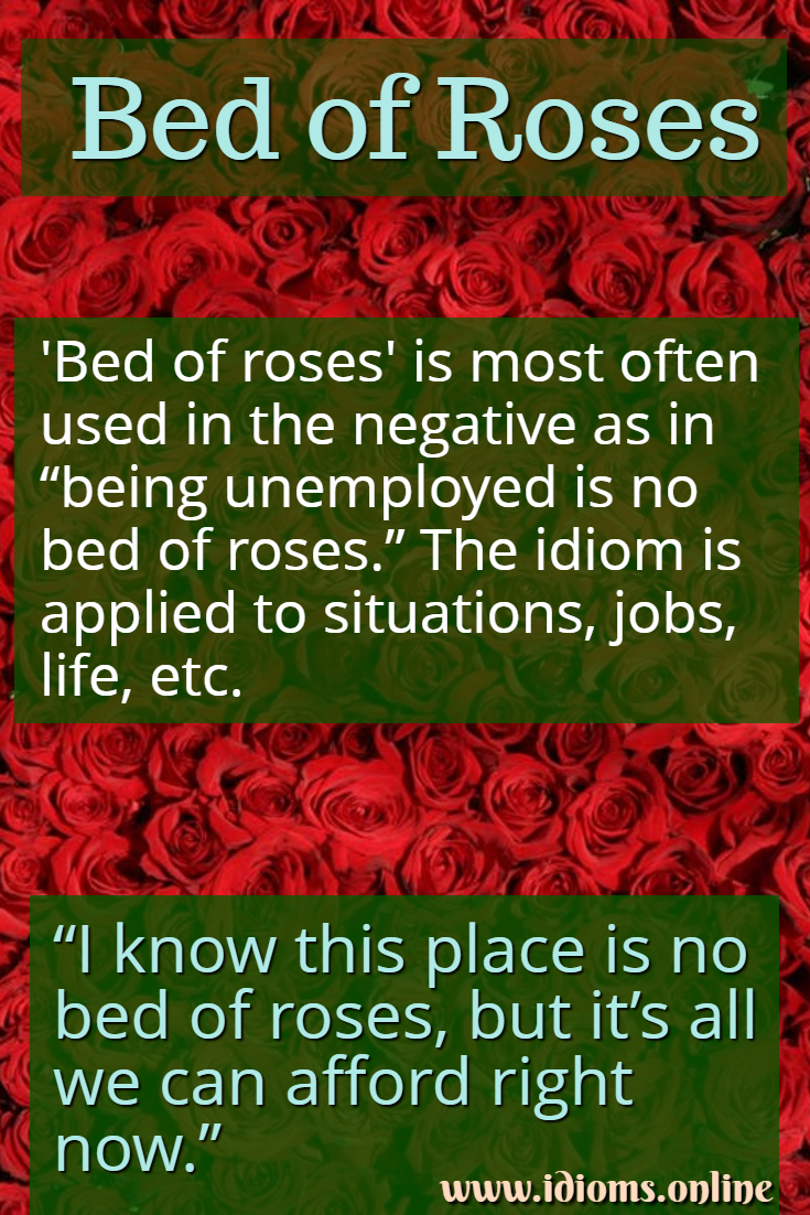 Bed of roses idiom meaning