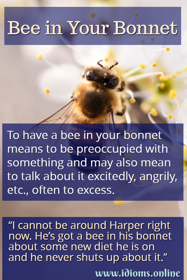 Bee in your (or one's) bonnet idiom meaning