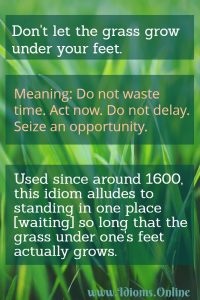 don't let the grass grow under your feet idiom meaning