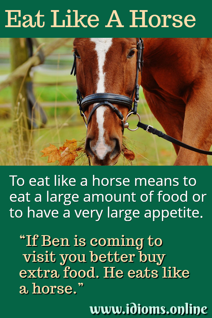 Meaning of idiom eat like a horse