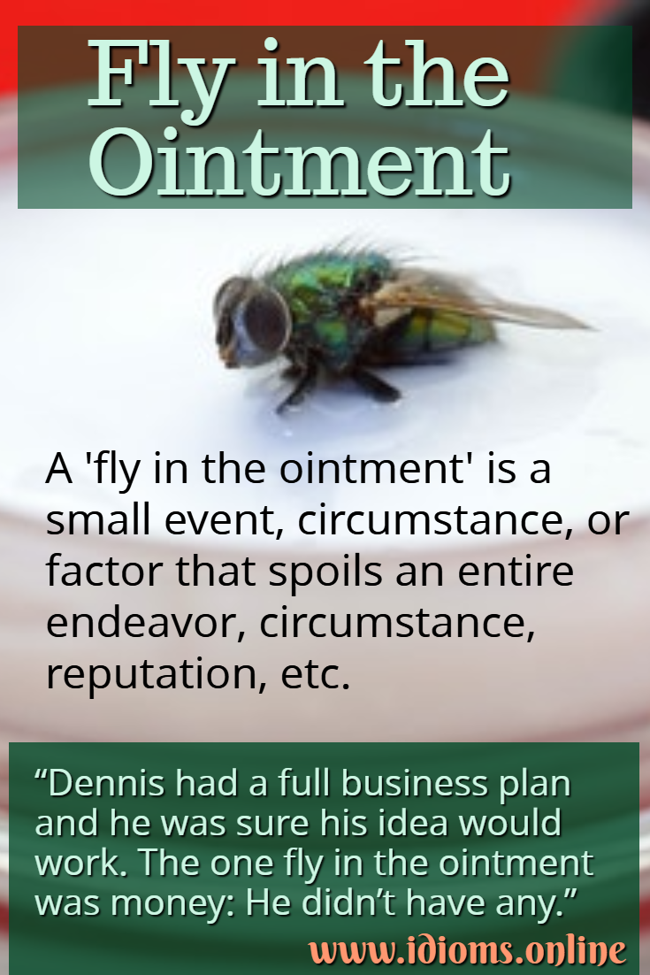 Fly in the ointment idiom meaning