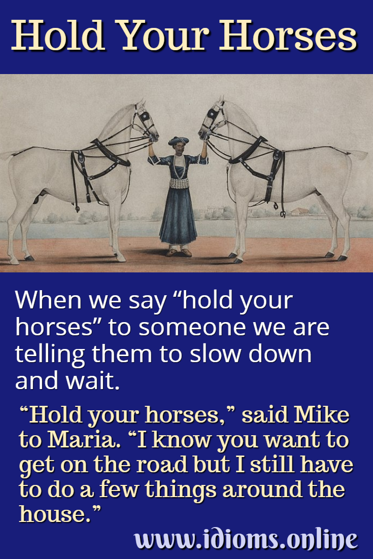 Hold Your Horses   Idioms Online