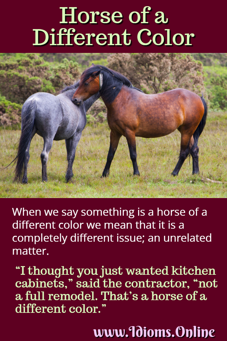 horse of a different color idiom meaning