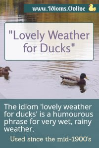 lovely weather for ducks idiom meaning