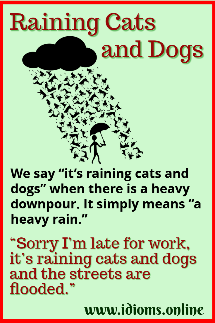Raining Cats And Dogs Idioms Online