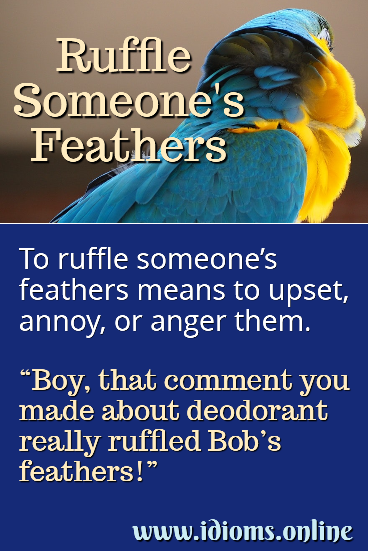 Ruffle someone's feathers idiom meaning