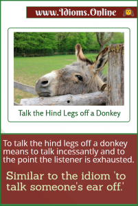 talk the hind legs off a donkey idiom meaning