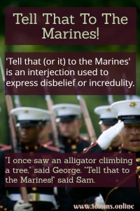 tell that to the marines idiom meaning