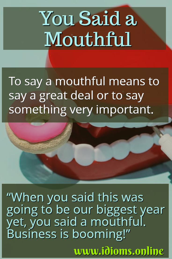 You said a mouthful idiom meaning