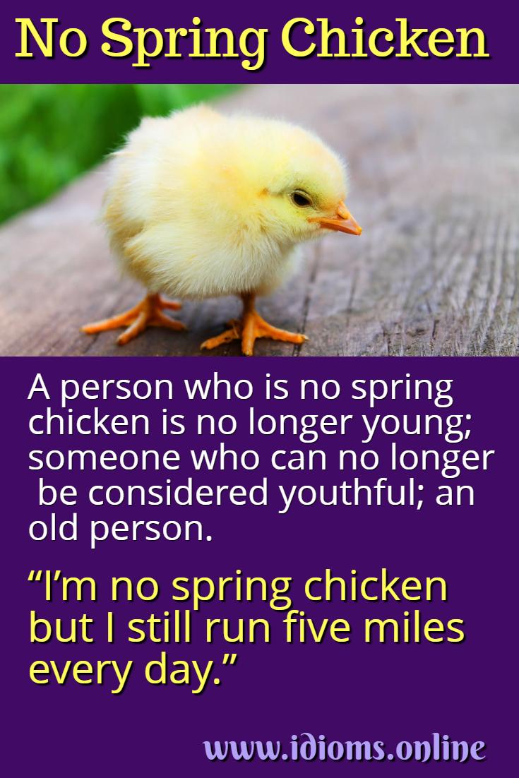 No spring chicken idiom meaning