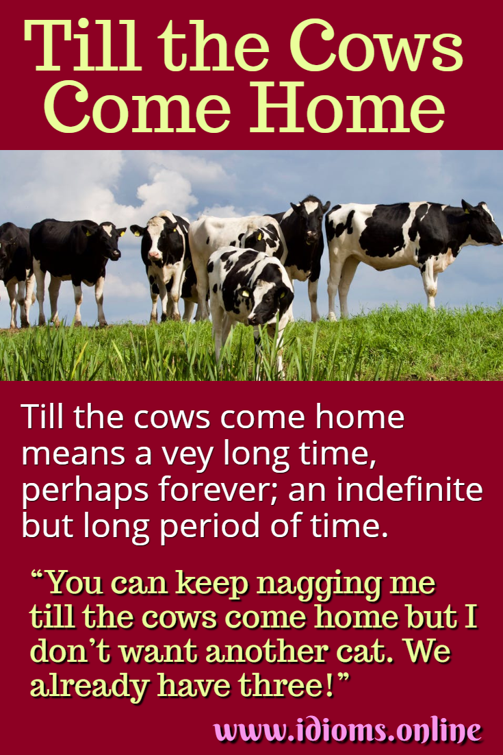 Till the cows come home idiom meaning