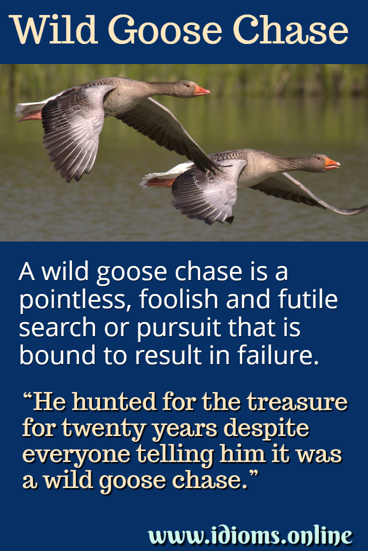 Wild goose chase idiom meaning